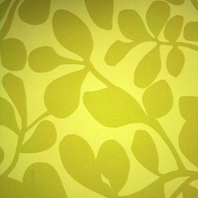 Comprar Papel tapiz Codium Verde
