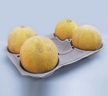 Comprar Porta Melones