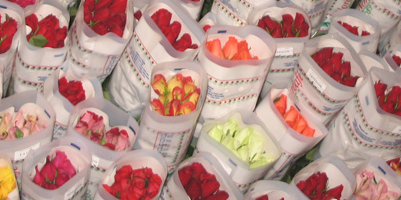 Comprar Ramo de Flores