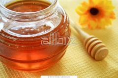 Miel 100% Pura de Abejas