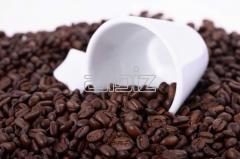 Café Lucia