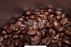 Café FSHB-EP Gourmet