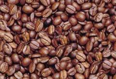 Café Altura Supremo