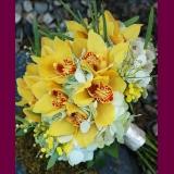Orquídea especial