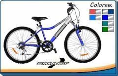 Bicicleta Smart 20