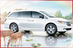 Vehículo Honda Odyssey