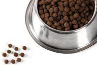 Alimento Para Perros Alican