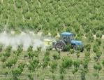 Herbicidas Ally 60 WG
