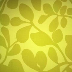 Papel tapiz Codium Verde