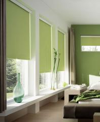 Persianas de color verde