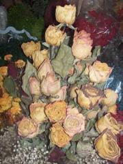 Flores naturales FL-437