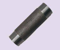 Niple Cod. 2973