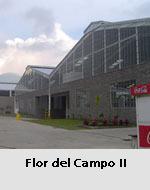 Estructura metálica Flor del Campo II