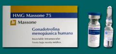 HMG Massone