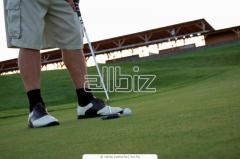 Zapatos Para Golf