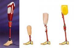 Prótesis Pediátricas para todos los Niveles de