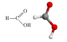 Acido fórmico