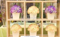 Rosas en Cajas Grandes