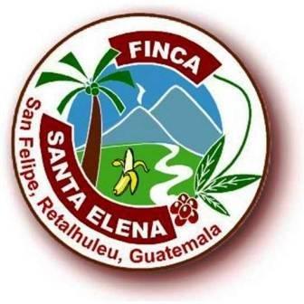 Finca Santa Elena, Empresa,  San Felipe