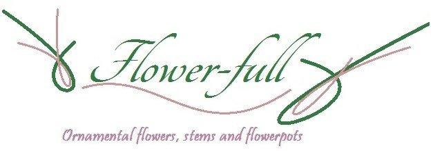 Flowerfullgt,  Mixco